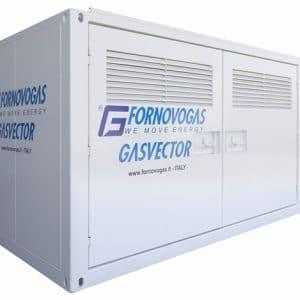Cabinato Omologato GasVector